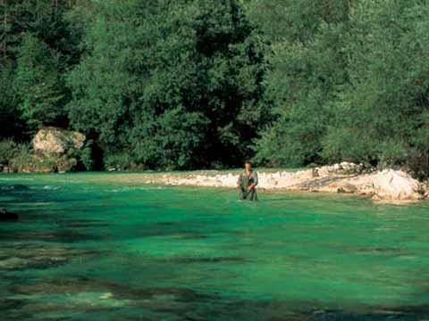 Fliegenfischen in Südkärnten und Slowenien